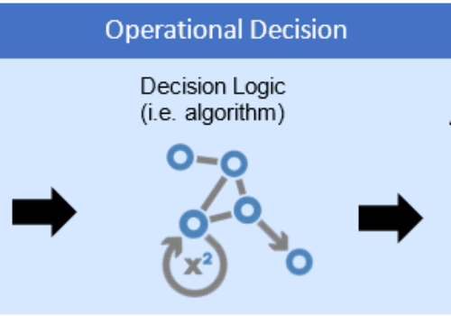 What are Operational Decisions?